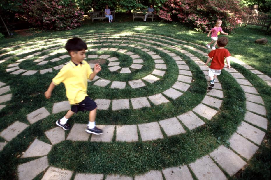 kids on the maze