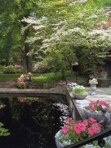 reflecting pool side