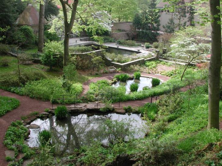 overview of reflecting pool koi ponds