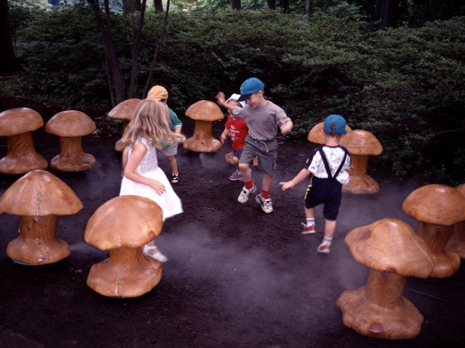kids in fairy circle