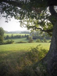 brandywine valley